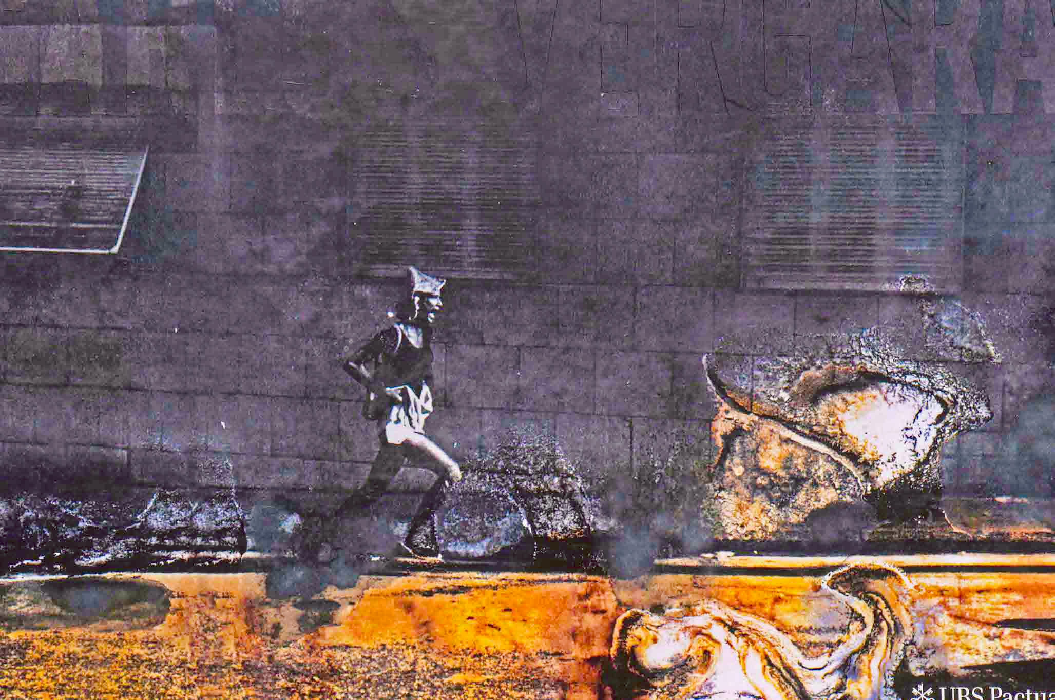 Capa do livro Carlos Vergara